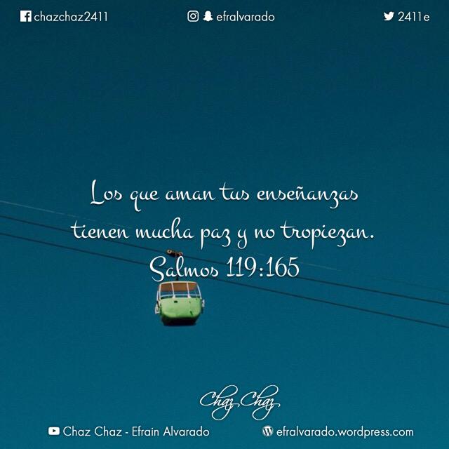 IMG_3803 copy